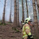 Löschen des Brandes im steilen Gelände